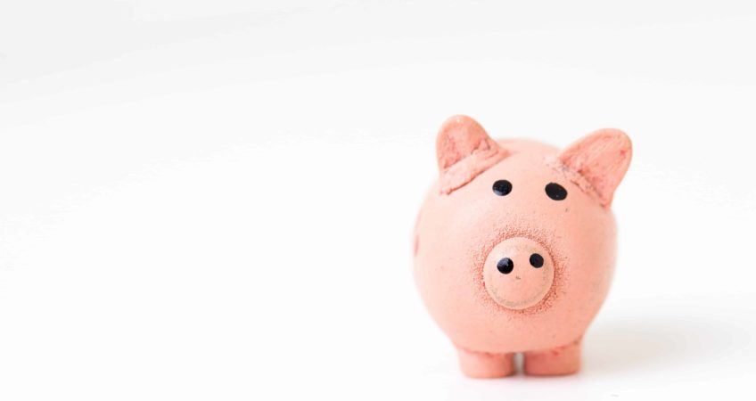 4 creative ways to fund your animal rescue