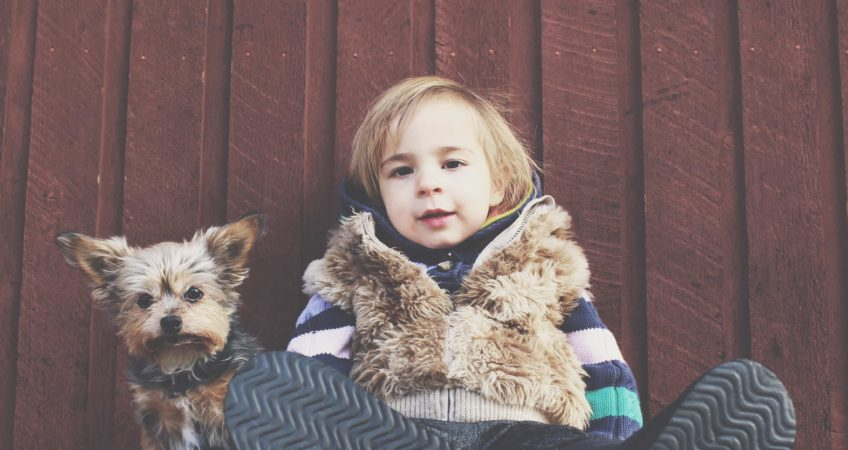 Simple rules to teach kids about animals
