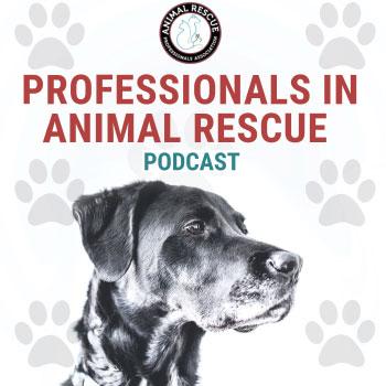 Professionals in Animal Rescue